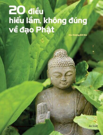 20 dieu hieu lam khong dung ve dao phat 01