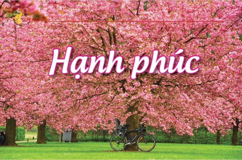 Tap chi nghien cuu phat hoc So thang 1.2017 Hanh Phuc 1