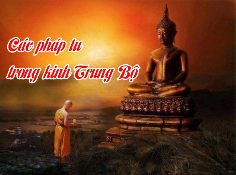Tap chi Nghien cuu Phat hoc Cac phap tu trong Kinh Trung Bo 5